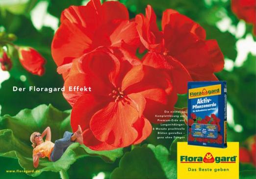 Der Floragard Effekt