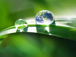 Natürlich nachhaltig …